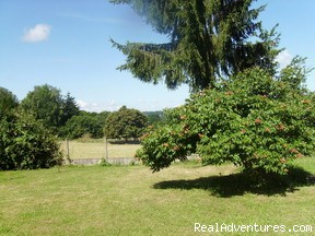 Large, private garden - Spacious Village Holiday Rental, up to 14 people