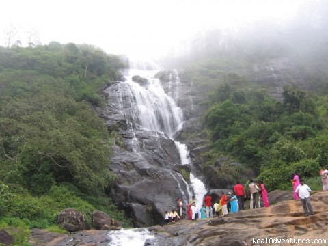 - Dreams Kerala- Package tour programs