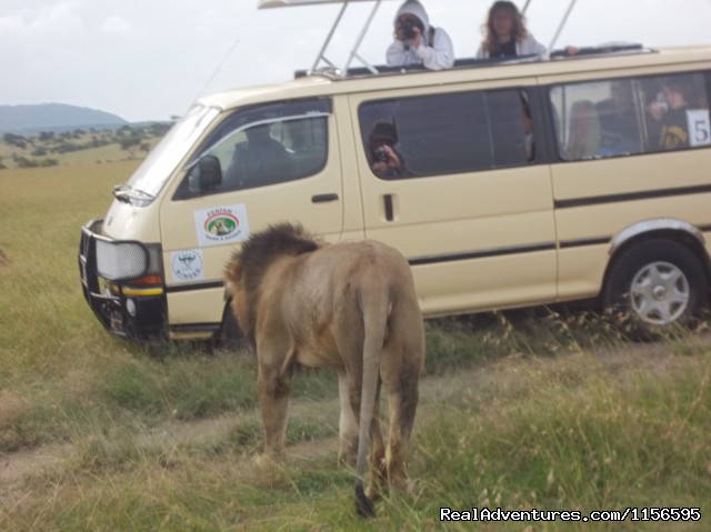 Adventure Penfam tours Kenya-Tanzania Safaris: