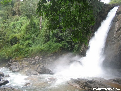 Soochipara waterfall - Hiliya Resort Wayanad
