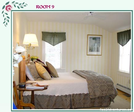 Deluxe Room 9 - Buttonwood Inn on Mount Surprise