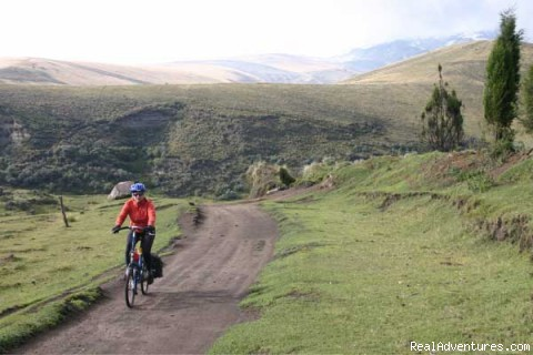 Enjoying a 50km downhill - The Andean Bicycle Travel Company