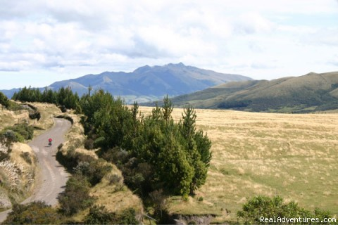 Riding the paramo: Cotopaxi National Park - The Andean Bicycle Travel Company