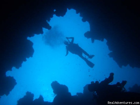 Diving on the red sea - Scarab Egypt Tours packages, Budget Holidays