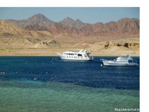 Sharm El Sheikh - Scarab Egypt Tours packages, Budget Holidays