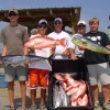 Family Fishing, Gulf Shores, Orange Beach, Al. Reef Fishing Trip