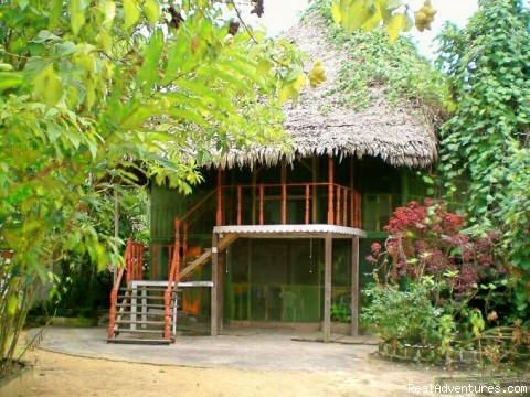 Famous Amazonian Jungle Healing Center