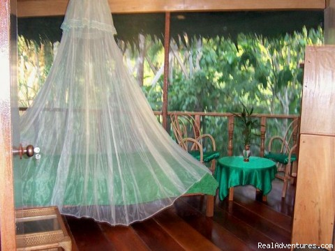 Image #2 of 12 - Famous Amazonian Jungle Healing Center