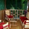 Famous Amazonian Jungle Healing Center