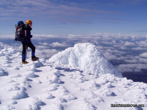 Mt Taranaki summit - Guided Climbs And Treks On Mt Taranaki/egmont