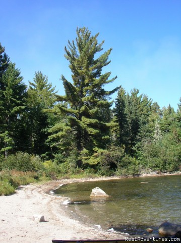 Beautiful sandy shore (#5 of 11) - Ontario/Quetico Park canoe trip