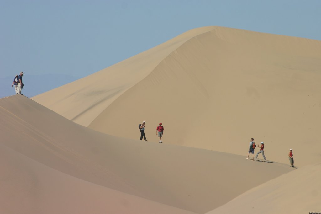 Khongor sand dune | Image #3/3 | Adventures and treks in Mongolia