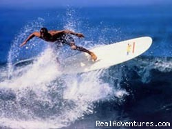 Surfing! - Learn Spanish on the Beach, Surf and Scuba Dive