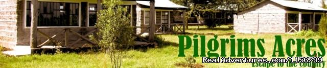 Image #1 of 5 - Pilgrims Acres