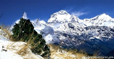 Trekking in Nepal - Adventures tirips in Nepal
