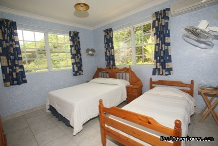 Blue Bedroom | Image #11/23 | Palm Paradise Guest House + 2 Apartments