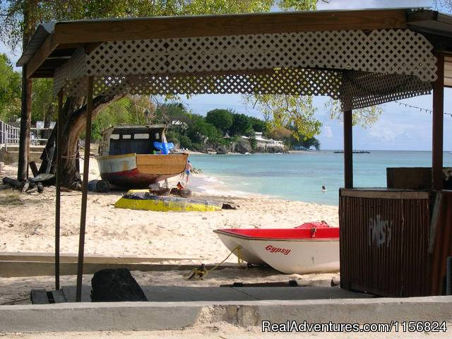 Beach at Paynes Bay - Palm Paradise Guest House + 2 Apartments