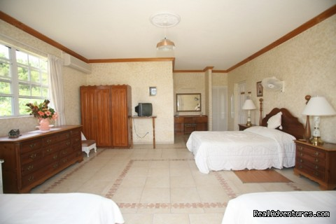 Paradise Suite Bedroom (#8 of 26) - Palm Paradise Guest House + 2 Apartments