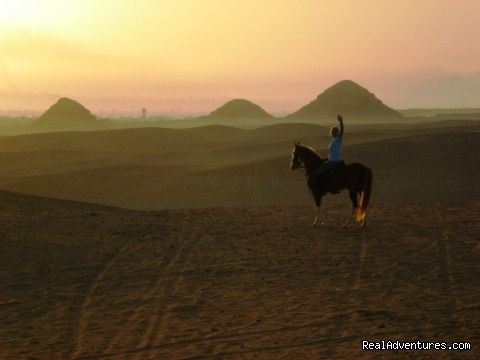 Laura ( Sunset tour) - Egypt Horse  and Dune Buggies Tours