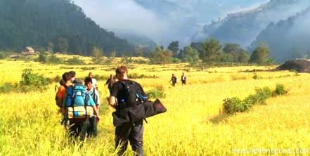 Trekking in nepal (#2 of 2) - World Heritage Treks & Expedition