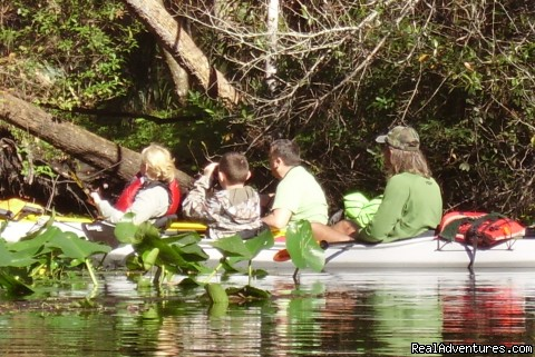 Derek and Family Birding on the Wekiva River - Birding, Eco and Kayak Tours in Central Florida