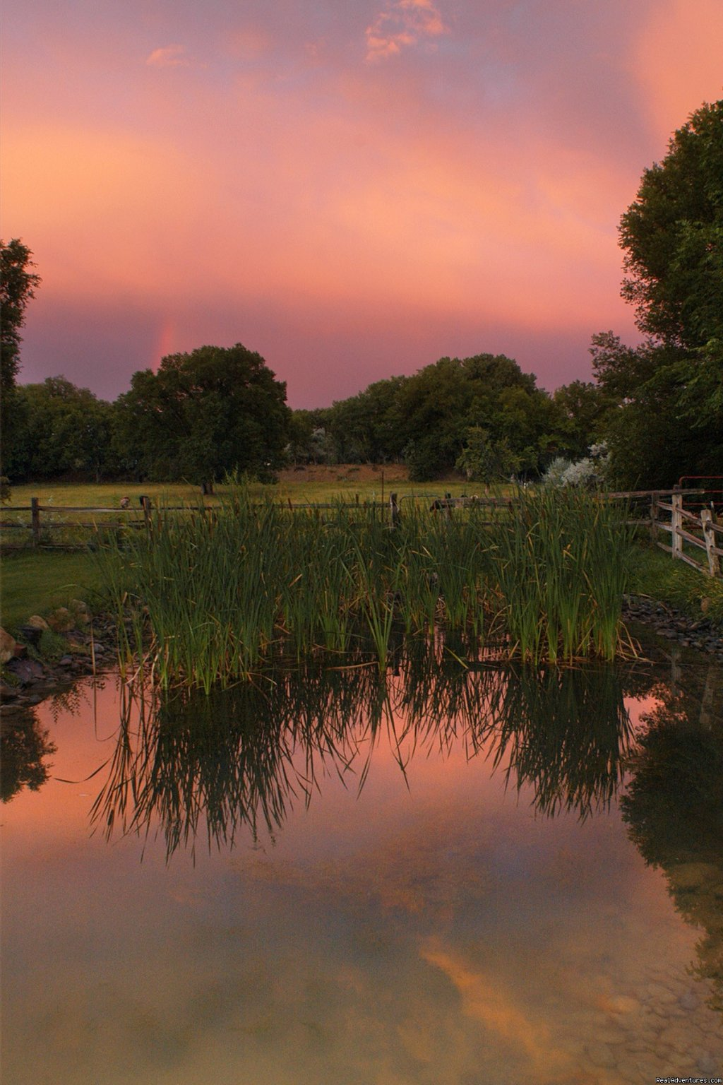 Sunset on Willow Pond | Image #2/2 | A Country Setting in Town at Willow Pond B&B