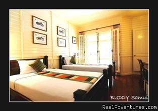 Superior Room - Samui Hotel, Buddy Samui Boutique Hotel, Koh Samui