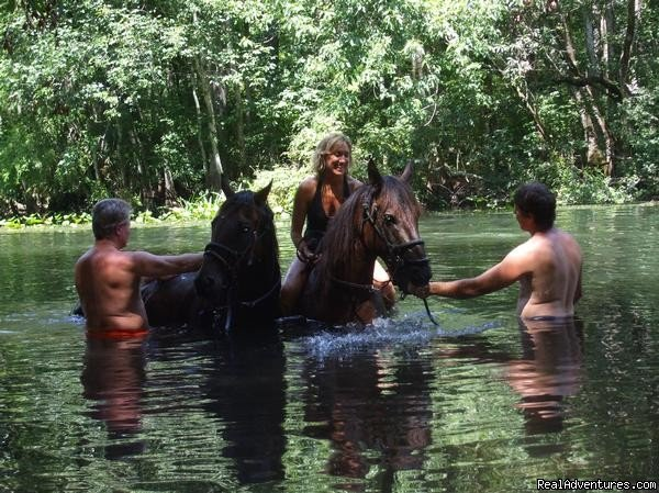 wimming Available On River Rides | Image #1/24 | Ocala, Florida  | Horseback Riding | Horseback Riding Near Ocala Florida