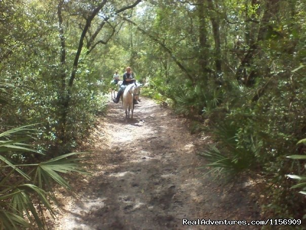Image #13/24 | Horseback Riding Near Ocala Florida