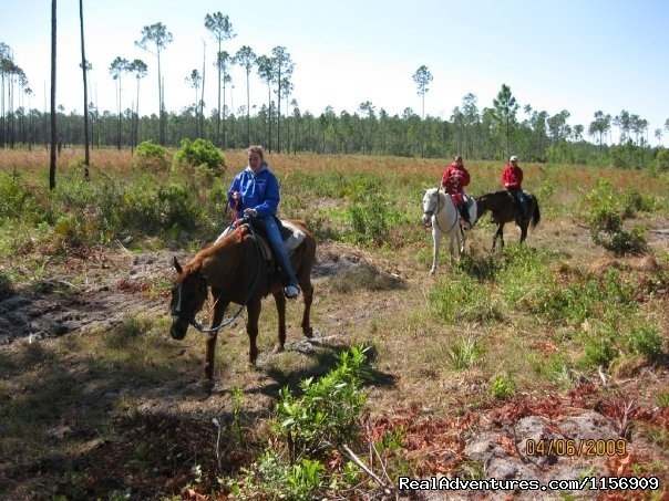 Image #15/24 | Horseback Riding Near Ocala Florida