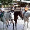 Horseback Riding Near Ocala Florida
