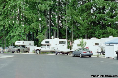 Monthly Specials - Edgewater RV Resort and Marina at Foster Lake
