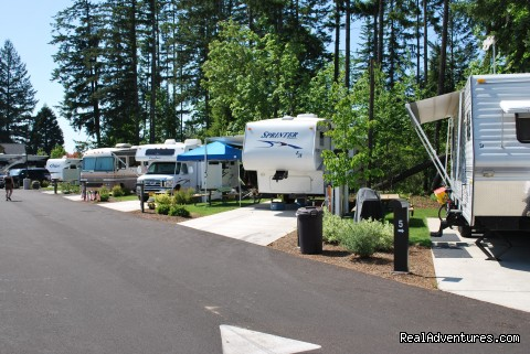 Edgewater Rv Resort And Marina At Foster Lake Sweet Home