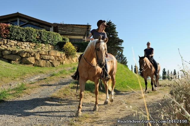 - Tuscany Farm Holiday Hotel Florence Italy
