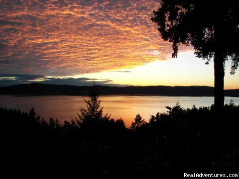 Salt Spring Island Cottage B&B: Sunrise at Suncrest