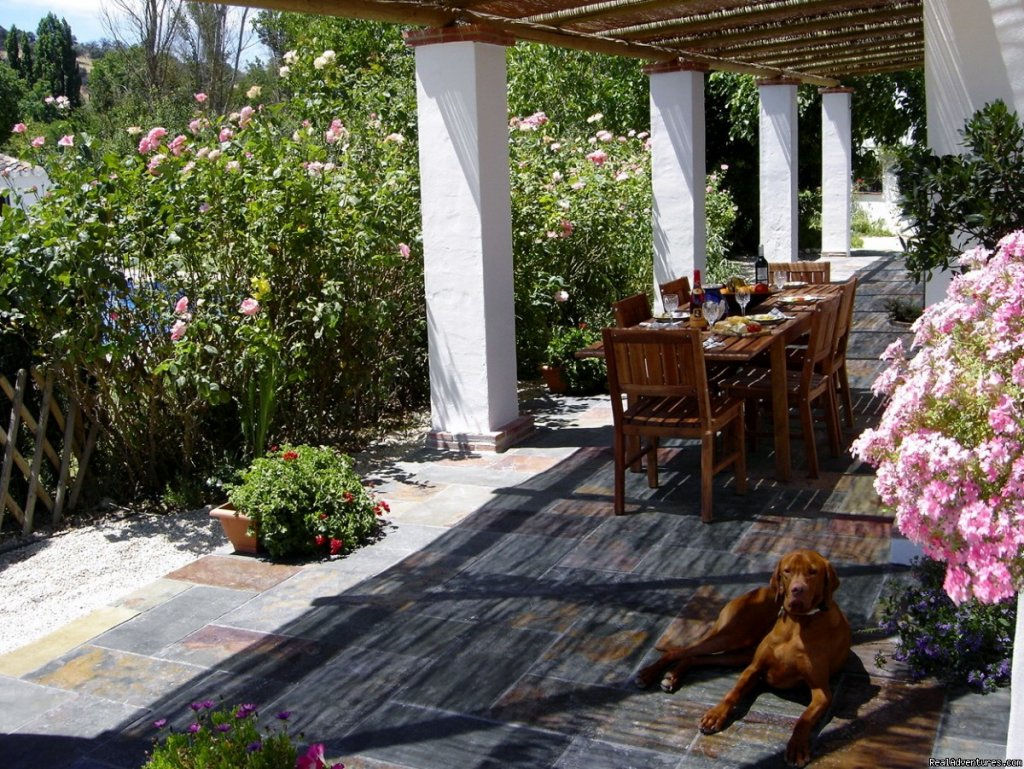 Casa Abuela terrace | Image #6/9 | Self-catering Vacation Ronda Andalucia Spain