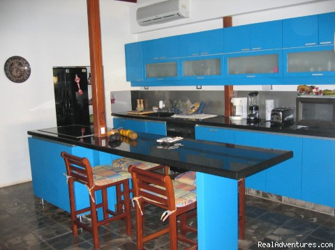 Oceanfront  Vacation Rental Kitchen - Oceanfront Playa Grande Vacation Rental Costa Rica