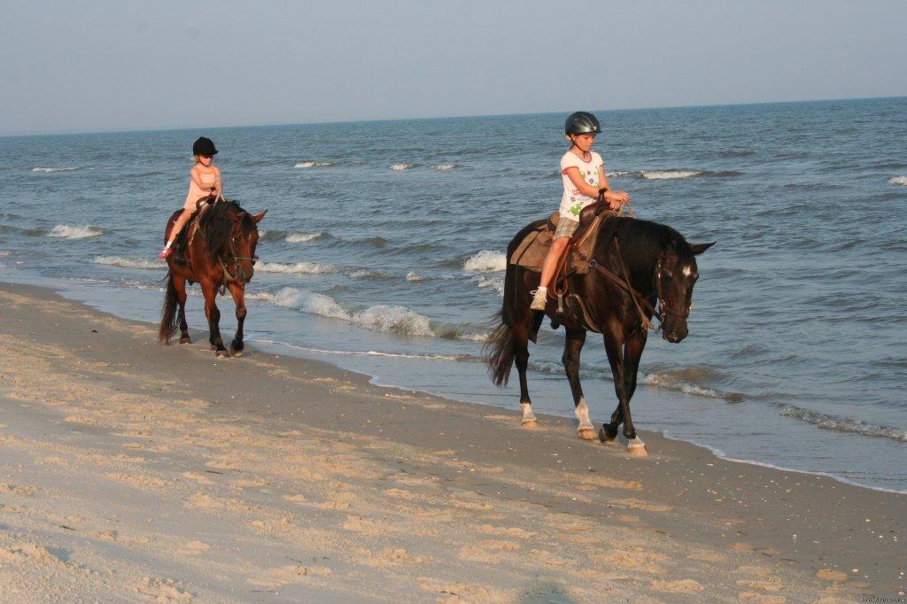 Le Horseback Riding On The Beach