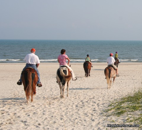 - Two-bit Stable Horseback Riding on the Beach