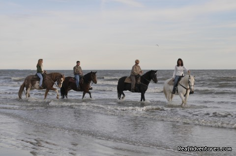 Two Bit Le Horseback Riding On The Beach