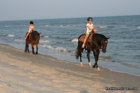 Two-bit Stable Horseback Riding on the Beach