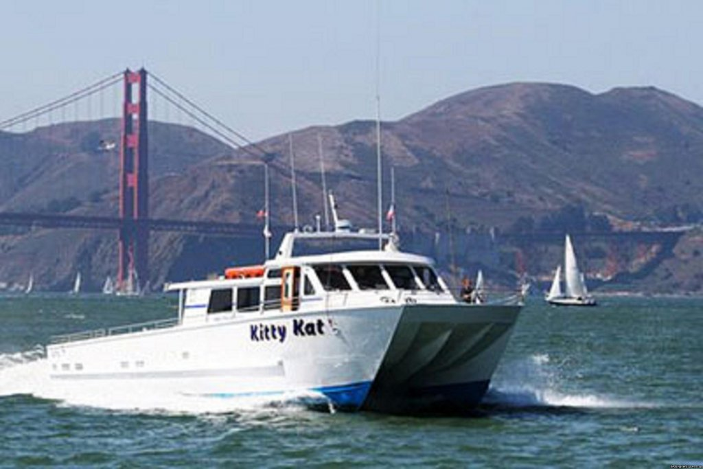 One of the top three things to do in San Francisco.Take the whole family or come alone on a whale watching tour. The boat leaves the dock at 7.30AM from San Francisco Fishermans wharf Fri,Sat,Sun