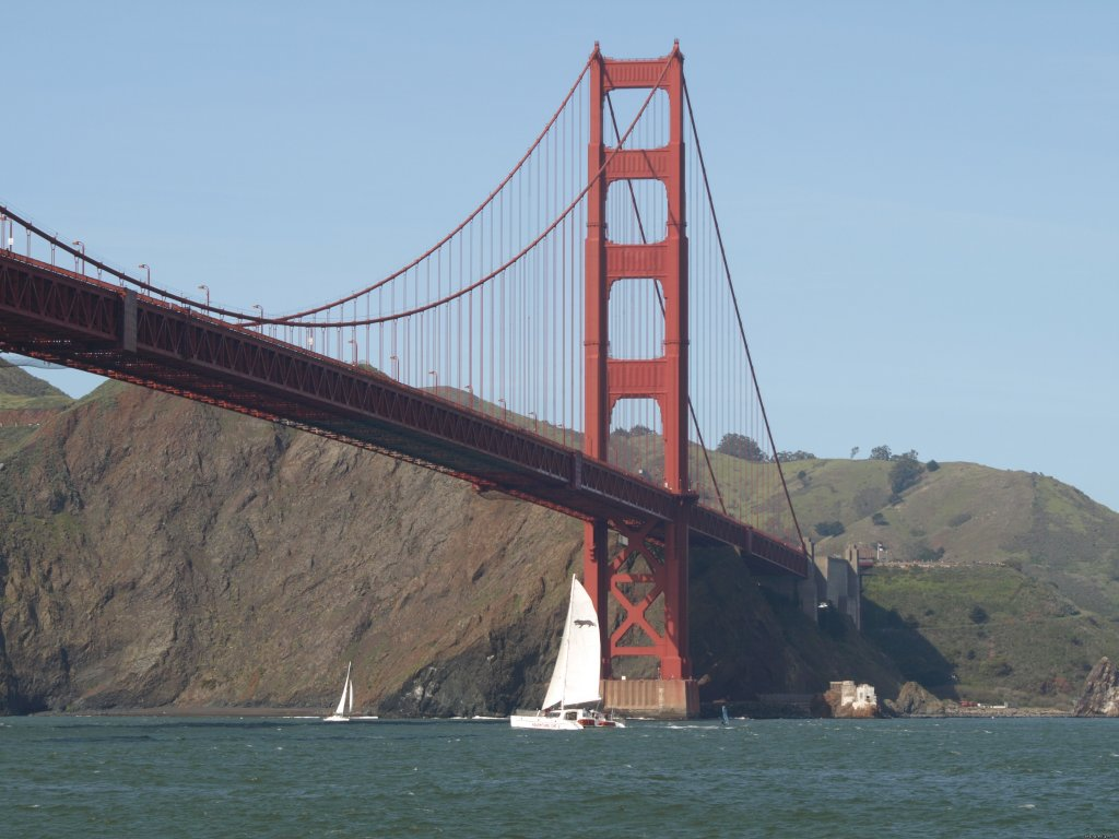 Golden Gate  | Image #4/19 | San Francisco whale tours