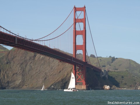 Golden Gate  - San Francisco whale tours