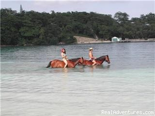 Horseback Riding at San San Beach - Moon San Villa at the Blue Lagoon