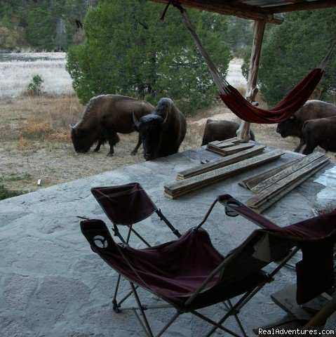 Bunkhouse in the Mornings | Image #3/16 | Remote Conservation Ranch By Copper Canyon Region
