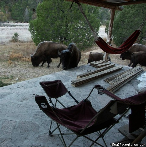 Bunkhouse in the Mornings - Remote Conservation Ranch By Copper Canyon Region