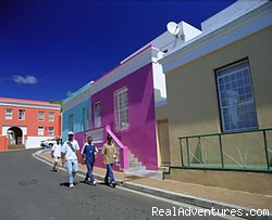Cape Town Seamore-Express Tours & Guesthouse - Accommodation,Tours & Safari in Cape Town