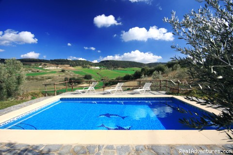 Cortijo del Medico: The large and wonderful pool