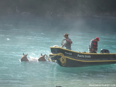 Riding and Trekking in Chilean Patagonia: Horses swiming, crossing Puelo River,